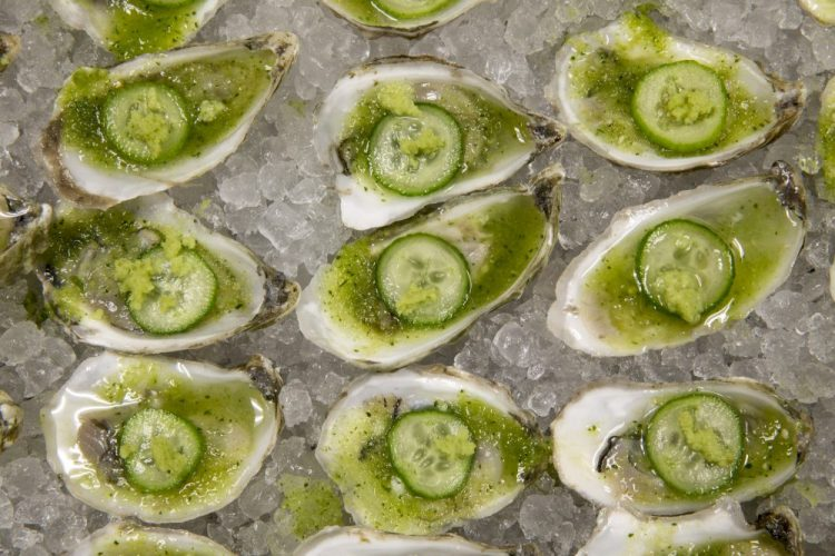 Delicious oysters make an elegant presentation.